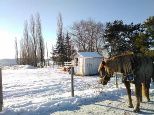 Sprungplatz im Winter