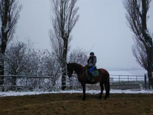Viereck im Winter